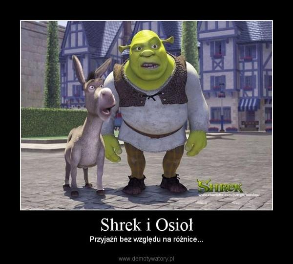 Shrek i Osioł – Przyjaźń bez względu na różnice...