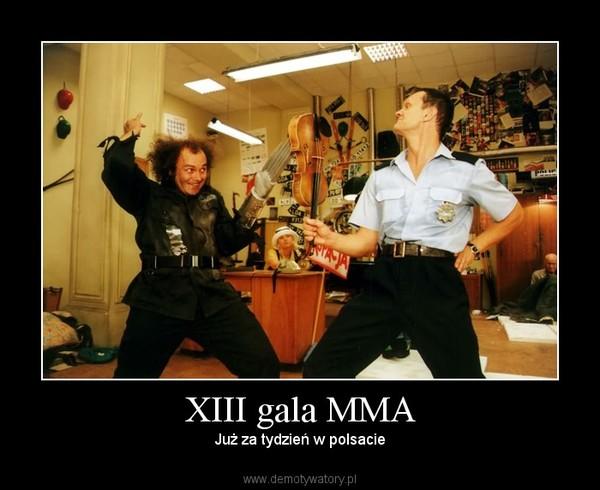 XIII gala MMA – Już za tydzień w polsacie