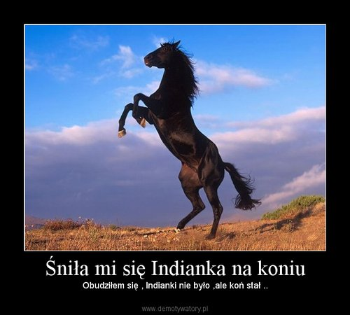 Śniła mi się Indianka na koniu