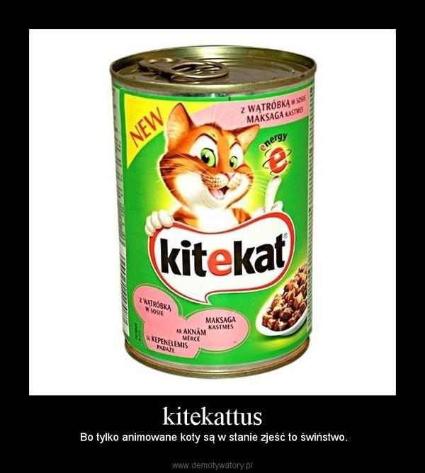 kitekattus –  Bo tylko animowane koty są w stanie zjeść to świństwo.