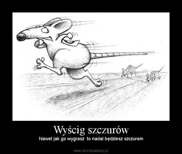 Znalezione obrazy dla zapytania wyscig szczurow