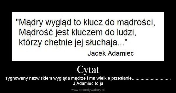 Cytat – sygnowany nazwiskiem wygląda mądrze i ma wielkie przesłanie...............................J.Adamiec to ja