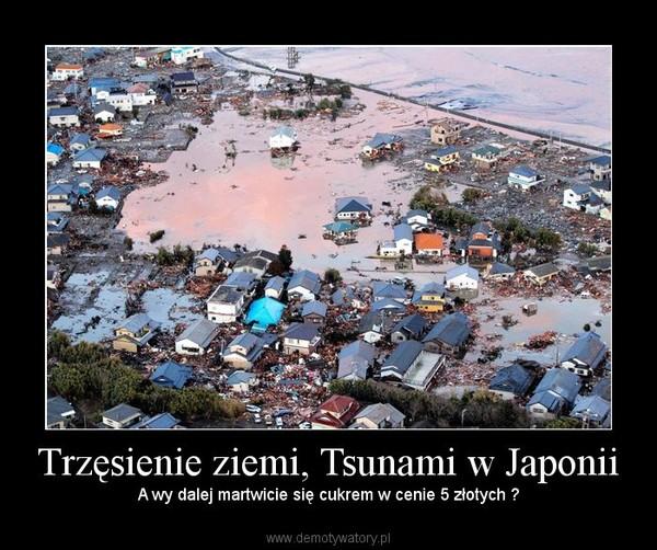 Trzęsienie ziemi, Tsunami w Japonii – A wy dalej martwicie się cukrem w cenie 5 złotych ?