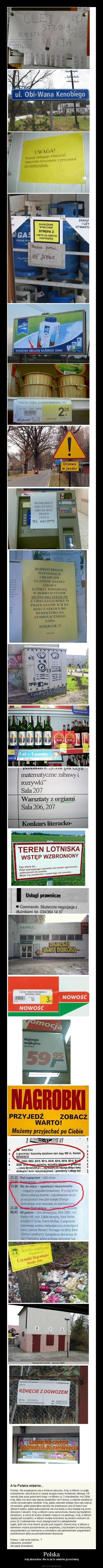 Polska – kraj absurdów. Ale to za to właśnie ją kochamy