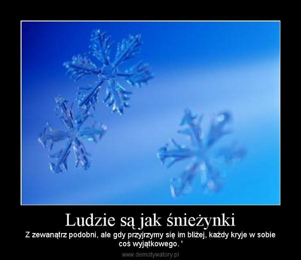 Ludzie są jak śnieżynki – Z zewanątrz podobni, ale gdy przyjrzymy się im bliżej, każdy kryje w sobiecoś wyjątkowego. '