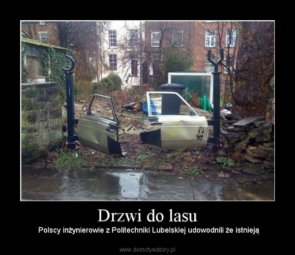 Drzwi do lasu – Polscy inżynierowie z Politechniki Lubelskiej udowodnili że istnieją