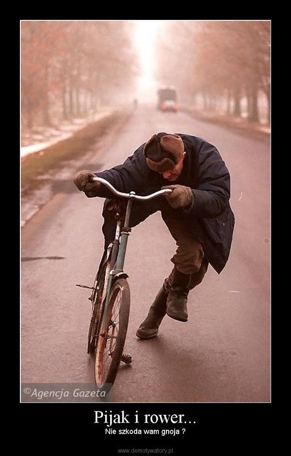 Pijak i rower... – Nie szkoda wam gnoja ?