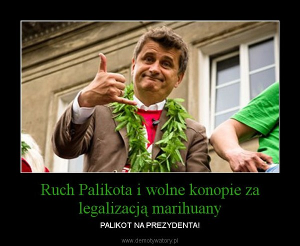 Ruch Palikota i wolne konopie za legalizacją marihuany – PALIKOT NA PREZYDENTA!
