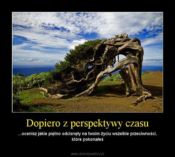 Dopiero z perspektywy czasu – ...ocenisz jakie piętno odcisnęły na twoim życiu wszelkie przeciwności, które pokonałeś