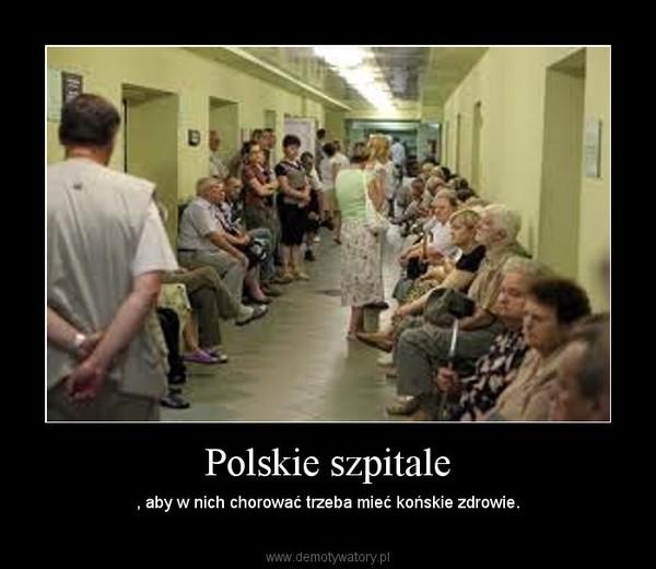 Polskie szpitale – , aby w nich chorować trzeba mieć końskie zdrowie.