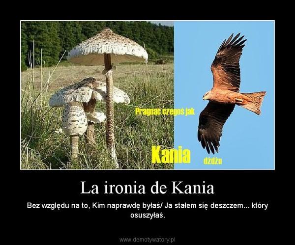 La ironia de Kania – Bez względu na to, Kim naprawdę byłaś/ Ja stałem się deszczem... który osuszyłaś.
