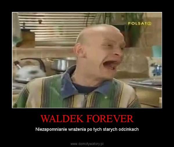 WALDEK FOREVER – Niezapomnianie wrażenia po tych starych odcinkach