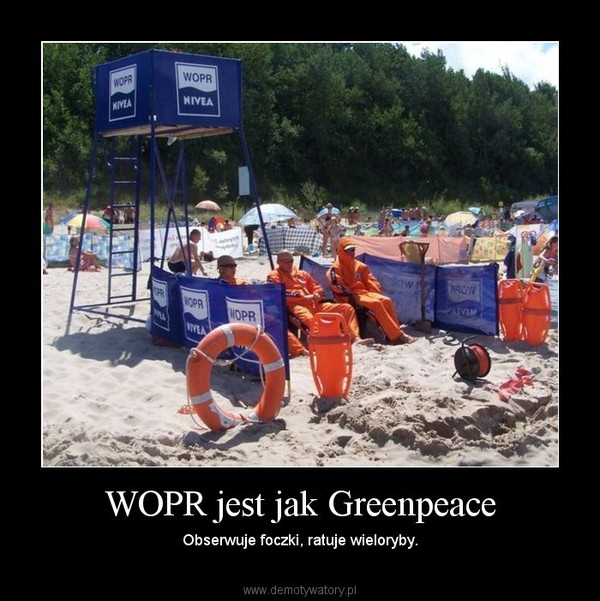 WOPR jest jak Greenpeace – Obserwuje foczki, ratuje wieloryby.