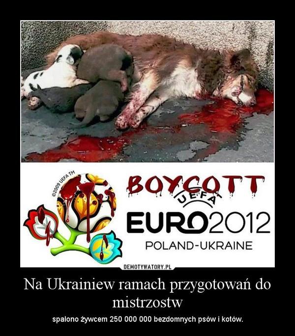Na Ukrainiew ramach przygotowań do mistrzostw – spalono żywcem 250 000 000 bezdomnych psów i kotów.