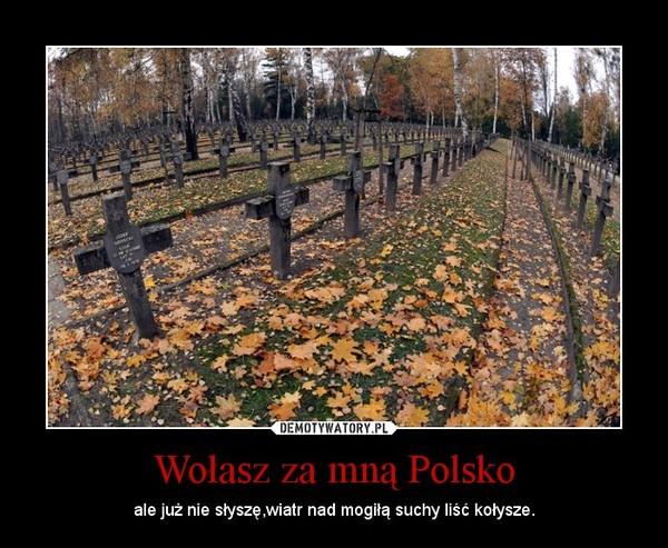 Wołasz za mną Polsko – ale już nie słyszę,wiatr nad mogiłą suchy liść kołysze.