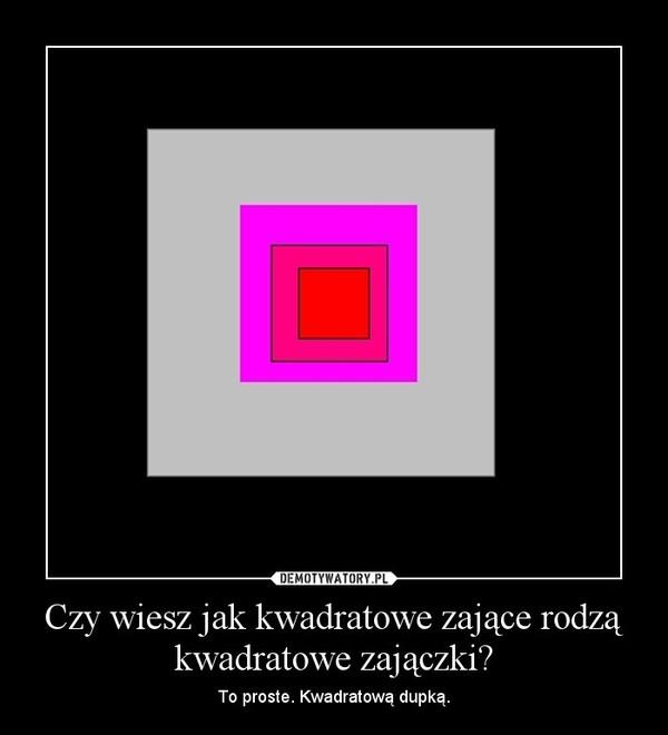 Czy wiesz jak kwadratowe zające rodzą kwadratowe zajączki? – To proste. Kwadratową dupką.