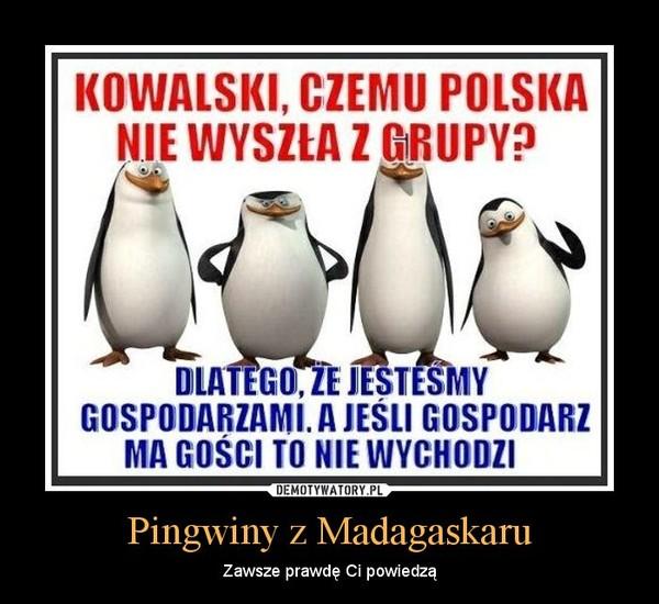 Pingwiny z Madagaskaru – Zawsze prawdę Ci powiedzą