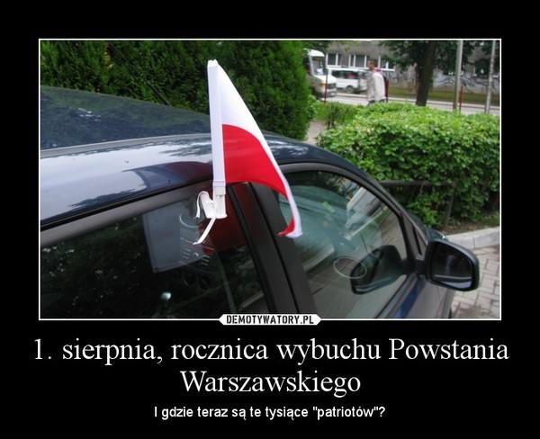 """1. sierpnia, rocznica wybuchu Powstania Warszawskiego – I gdzie teraz są te tysiące """"patriotów""""?"""