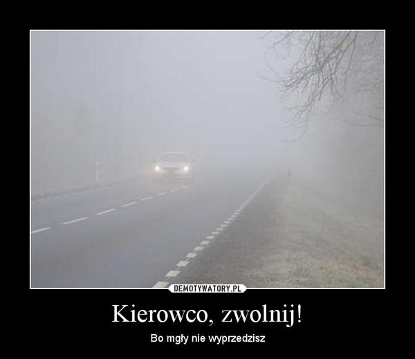 Kierowco, zwolnij! – Bo mgły nie wyprzedzisz