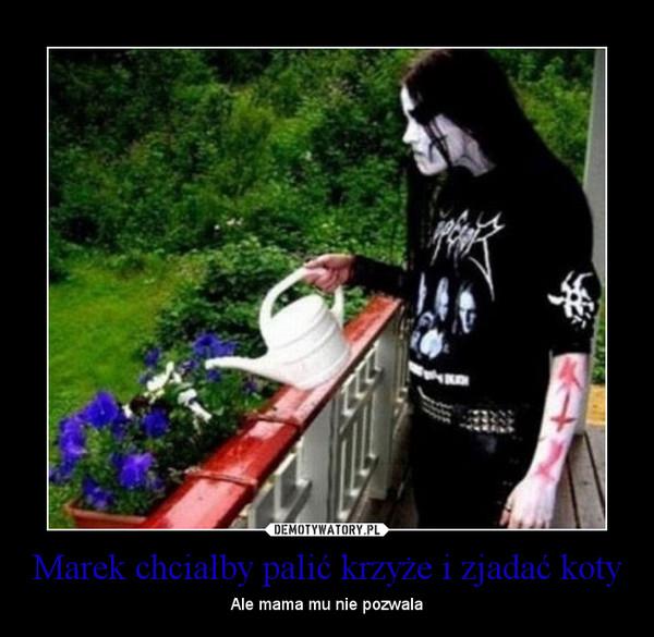 Marek chciałby palić krzyże i zjadać koty – Ale mama mu nie pozwala