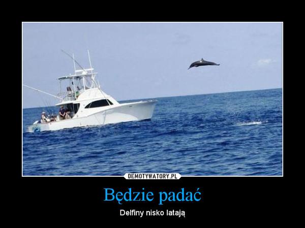 Będzie padać – Delfiny nisko latają