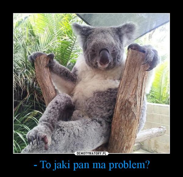 - To jaki pan ma problem? –
