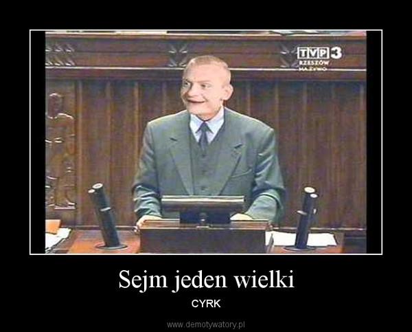 Sejm jeden wielki – CYRK