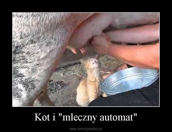 """Kot i """"mleczny automat"""" –"""