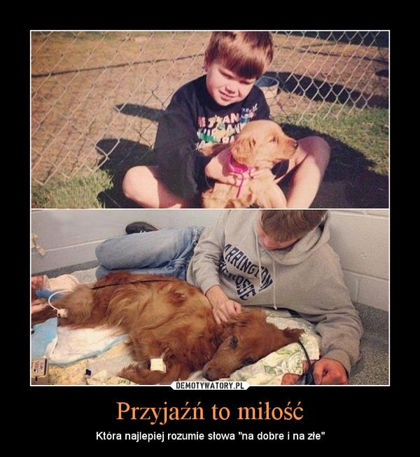 """Przyjaźń to miłość – Która najlepiej rozumie słowa """"na dobre i na złe"""""""