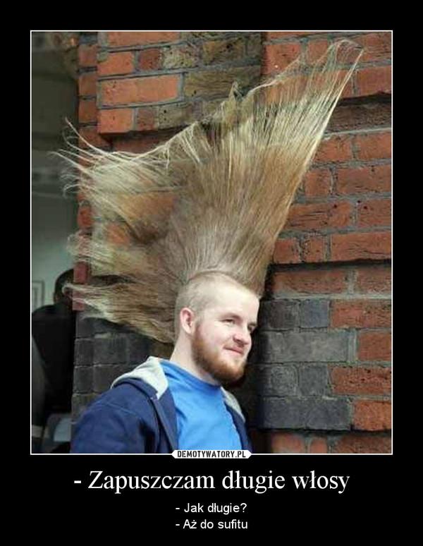 - Zapuszczam długie włosy – - Jak długie?- Aż do sufitu