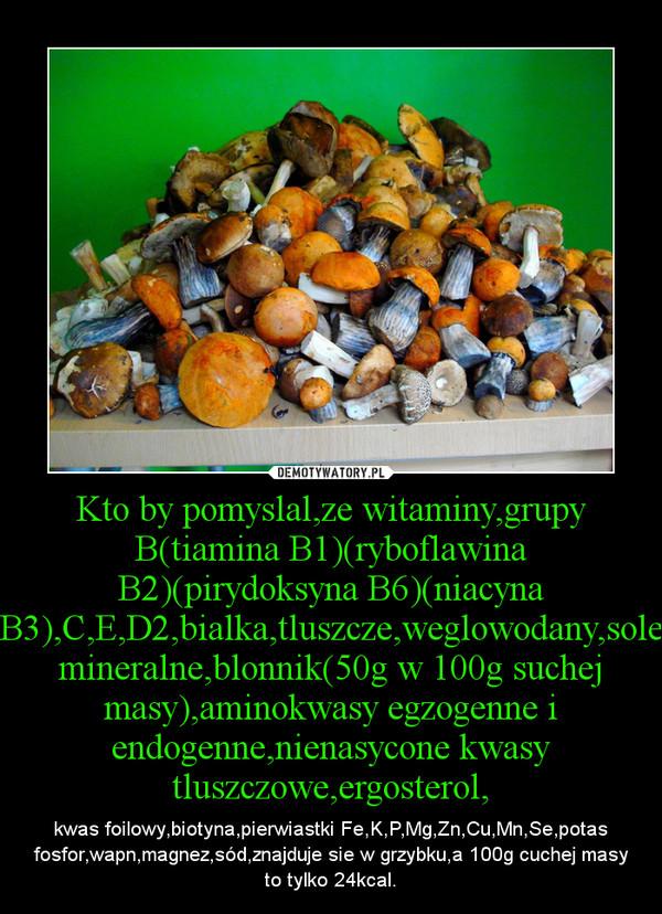 Kto by pomyslal,ze witaminy,grupy B(tiamina B1)(ryboflawina B2)(pirydoksyna B6)(niacyna B3),C,E,D2,bialka,tluszcze,weglowodany,sole mineralne,blonnik(50g w 100g suchej masy),aminokwasy egzogenne i endogenne,nienasycone kwasy tluszczowe,ergosterol, – kwas foilowy,biotyna,pierwiastki Fe,K,P,Mg,Zn,Cu,Mn,Se,potas fosfor,wapn,magnez,sód,znajduje sie w grzybku,a 100g cuchej masy to tylko 24kcal.