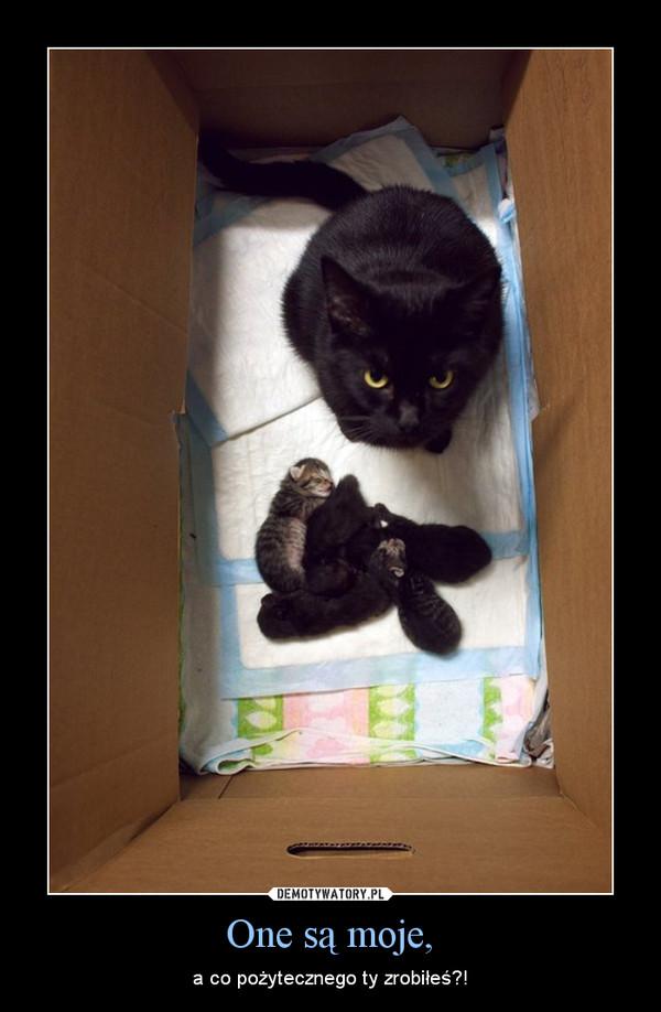 One są moje, – a co pożytecznego ty zrobiłeś?!
