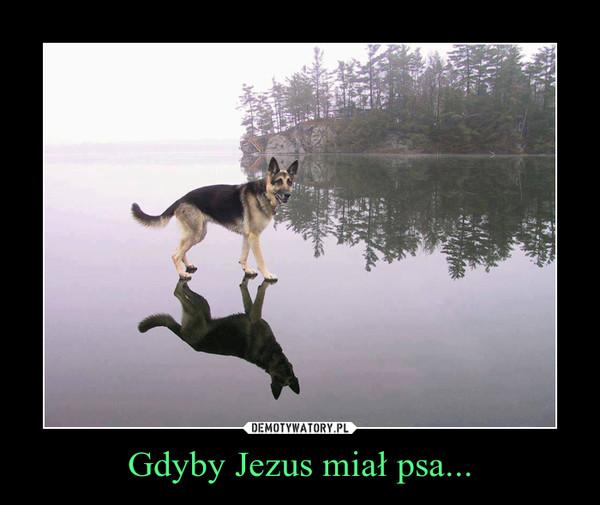 Gdyby Jezus miał psa... –
