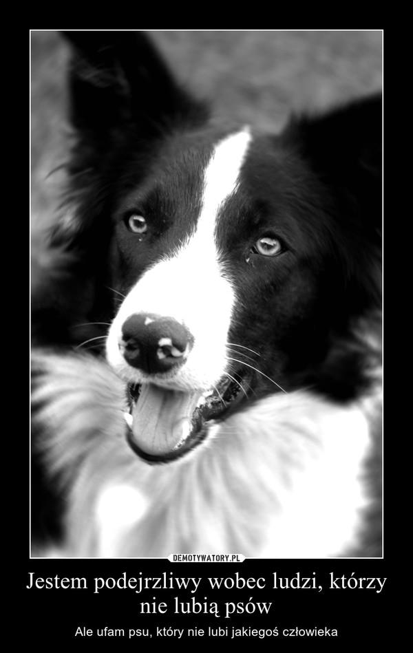 Jestem podejrzliwy wobec ludzi, którzy nie lubią psów – Ale ufam psu, który nie lubi jakiegoś człowieka