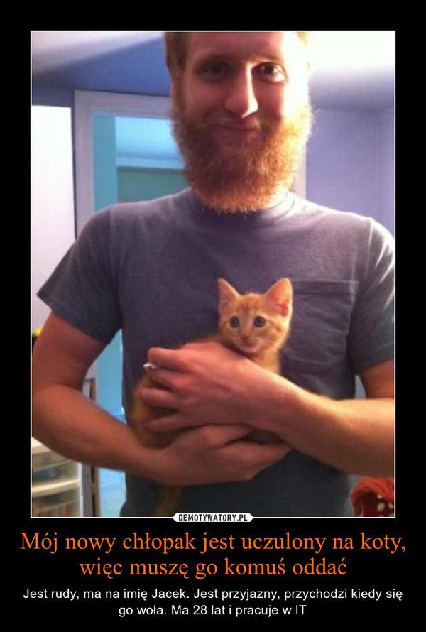 Mój nowy chłopak jest uczulony na koty, więc muszę go komuś oddać – Jest rudy, ma na imię Jacek. Jest przyjazny, przychodzi kiedy się go woła. Ma 28 lat i pracuje w IT