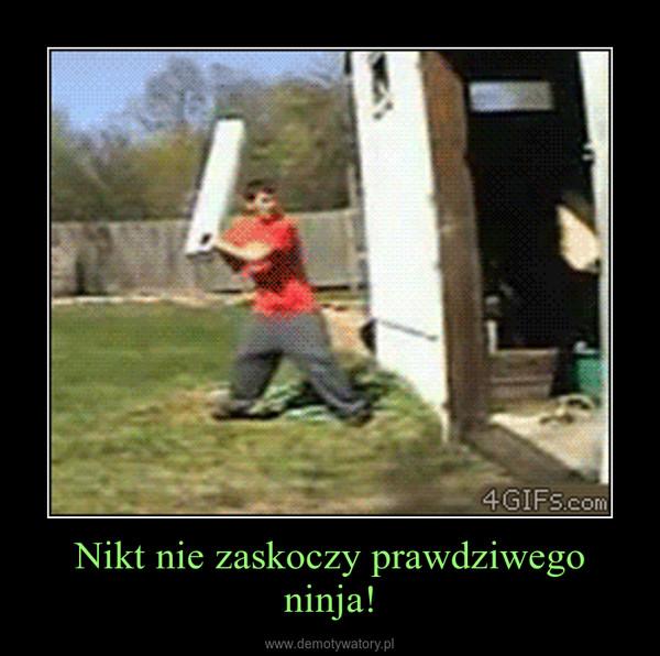 Nikt nie zaskoczy prawdziwego ninja! –