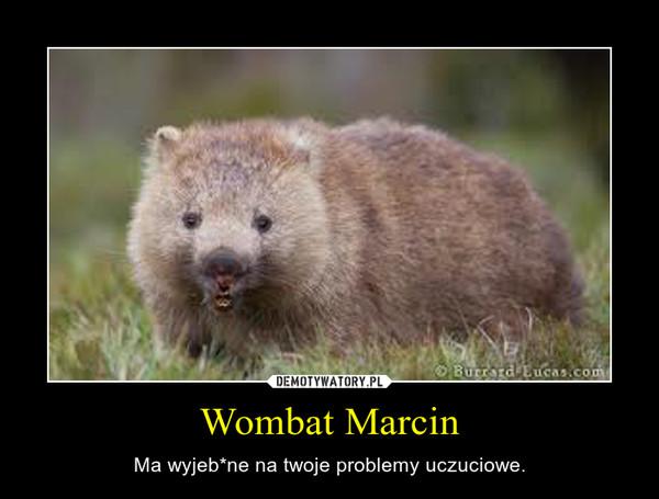 Wombat Marcin – Ma wyjeb*ne na twoje problemy uczuciowe.