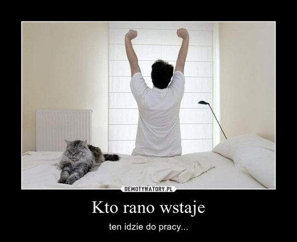 Kto rano wstaje – ten idzie do pracy...