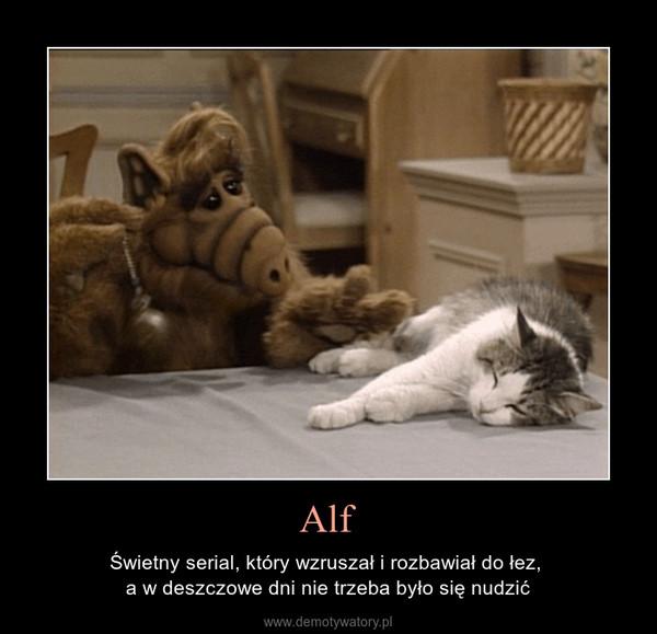 Alf – Świetny serial, który wzruszał i rozbawiał do łez, a w deszczowe dni nie trzeba było się nudzić