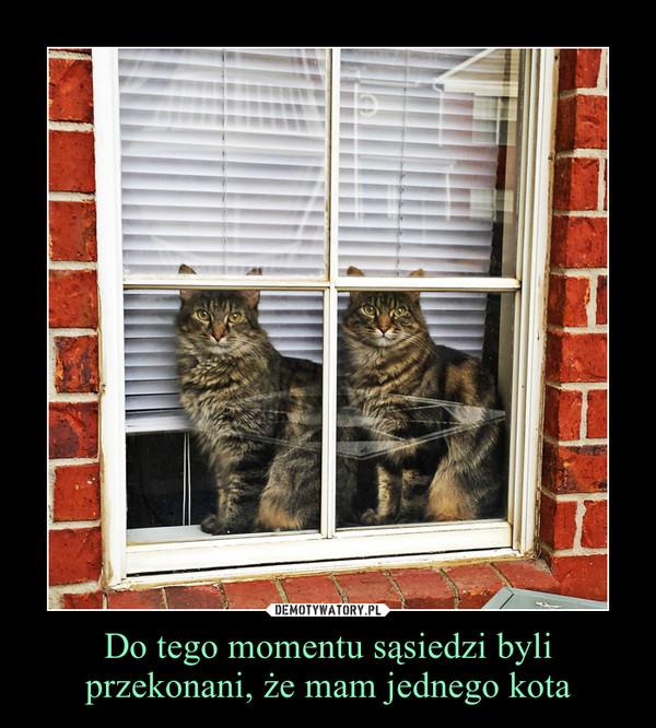Do tego momentu sąsiedzi byli przekonani, że mam jednego kota –