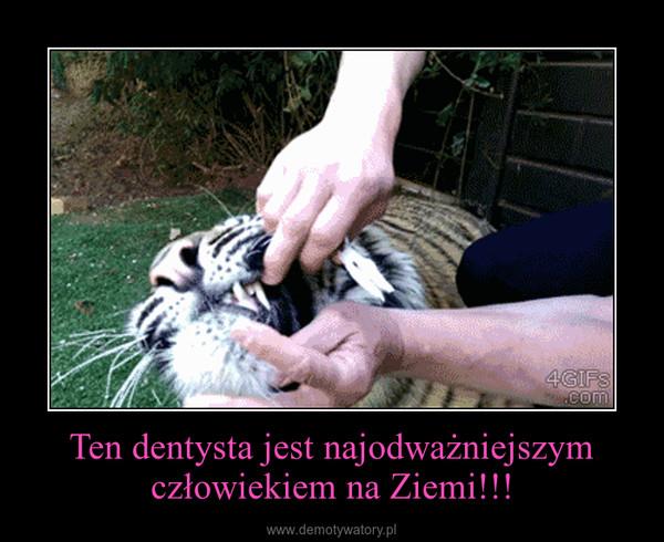 Ten dentysta jest najodważniejszym człowiekiem na Ziemi!!! –