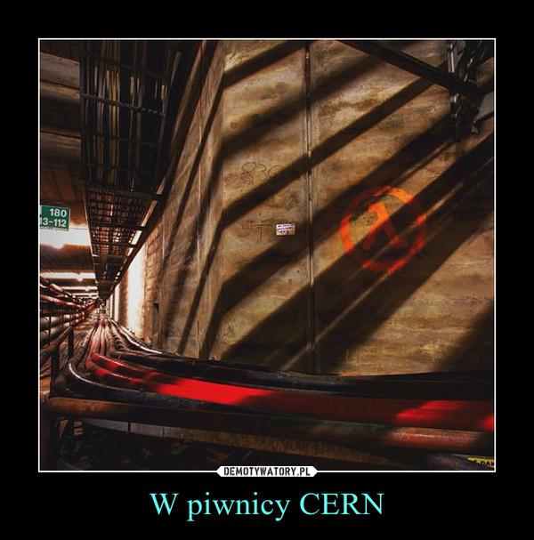 W piwnicy CERN –