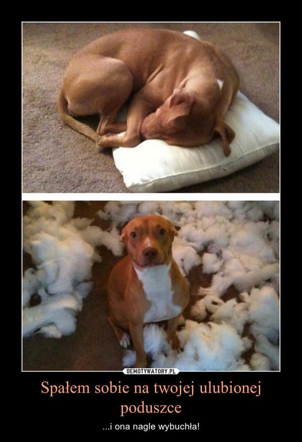 Spałem sobie na twojej ulubionej poduszce – ...i ona nagle wybuchła!