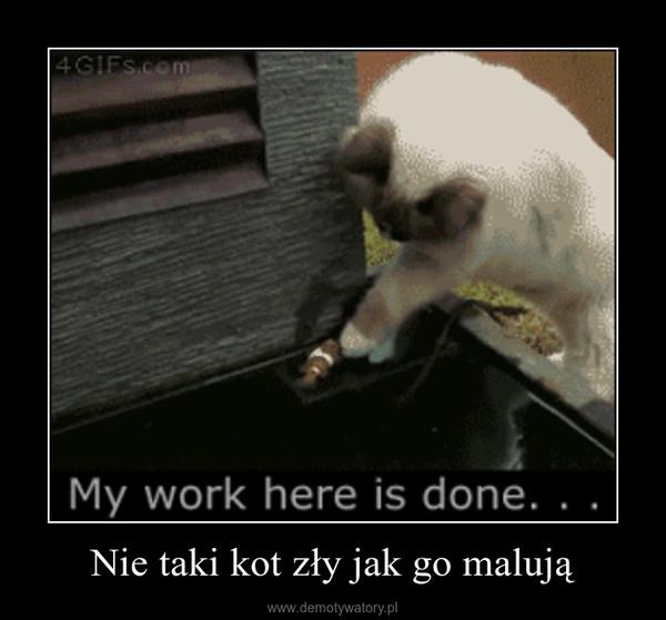 Nie taki kot zły jak go malują –