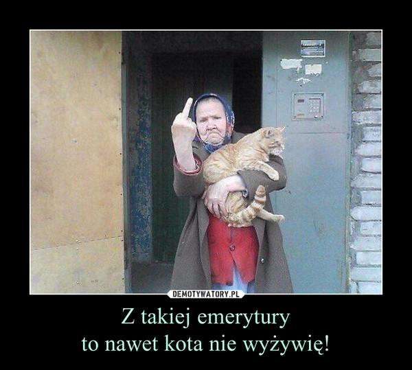 Z takiej emeryturyto nawet kota nie wyżywię! –