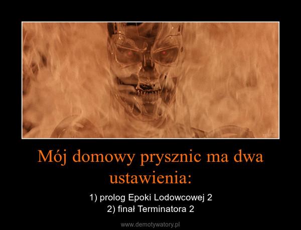 Mój domowy prysznic ma dwa ustawienia: – 1) prolog Epoki Lodowcowej 22) finał Terminatora 2