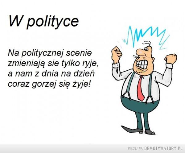 Polityka –