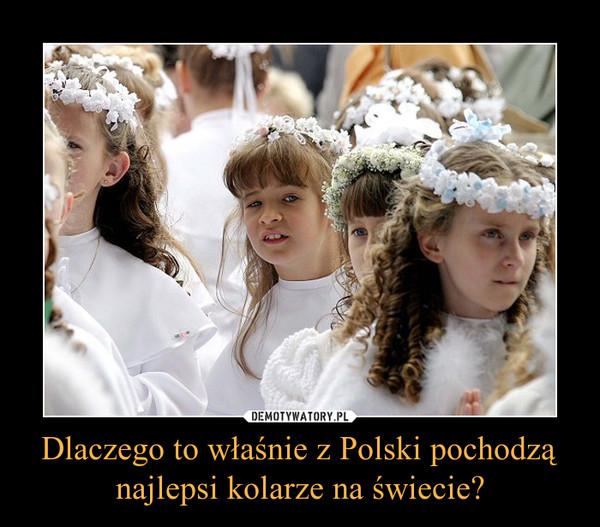 Dlaczego to właśnie z Polski pochodzą najlepsi kolarze na świecie? –