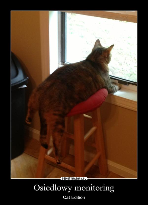 Osiedlowy monitoring – Cat Edition