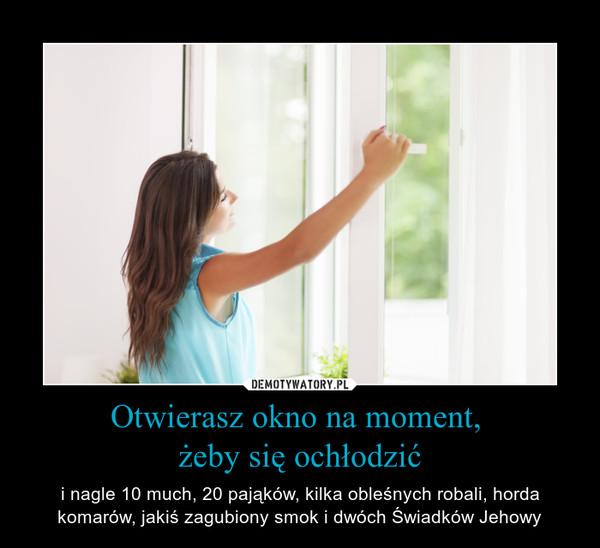Otwierasz okno na moment, żeby się ochłodzić – i nagle 10 much, 20 pająków, kilka obleśnych robali, horda komarów, jakiś zagubiony smok i dwóch Świadków Jehowy